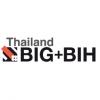 BIG+BIH 2020
