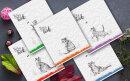 Новая серия 48- листных тетрадей