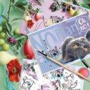 Альбомы BG для рисования ″MIX-Девочки″: 4 способа развить креативность