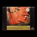 Тонированная бумага Rembrandt Toned Sanguine Red для смешанных техник
