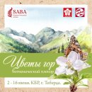 Royal Talens и Sakura – спонсоры ботанического пленэра «Цветы гор»