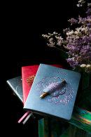 Escalada 2022! Потрясающая серия записных книжек с функциональной аппликацией-петлёй и карандашом в комплекте